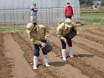 1学年の農場実習が始まりました。