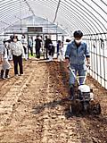 農場実習始まる