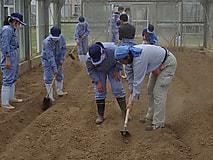 農場実習で農作業の基本技術を学びました