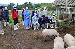 今年度最初の畜産(酪農)実習が行われました。